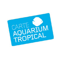 Aquarium Tropical de la Porte Doree (Paris 12e) - Pass-Famille 1 jour